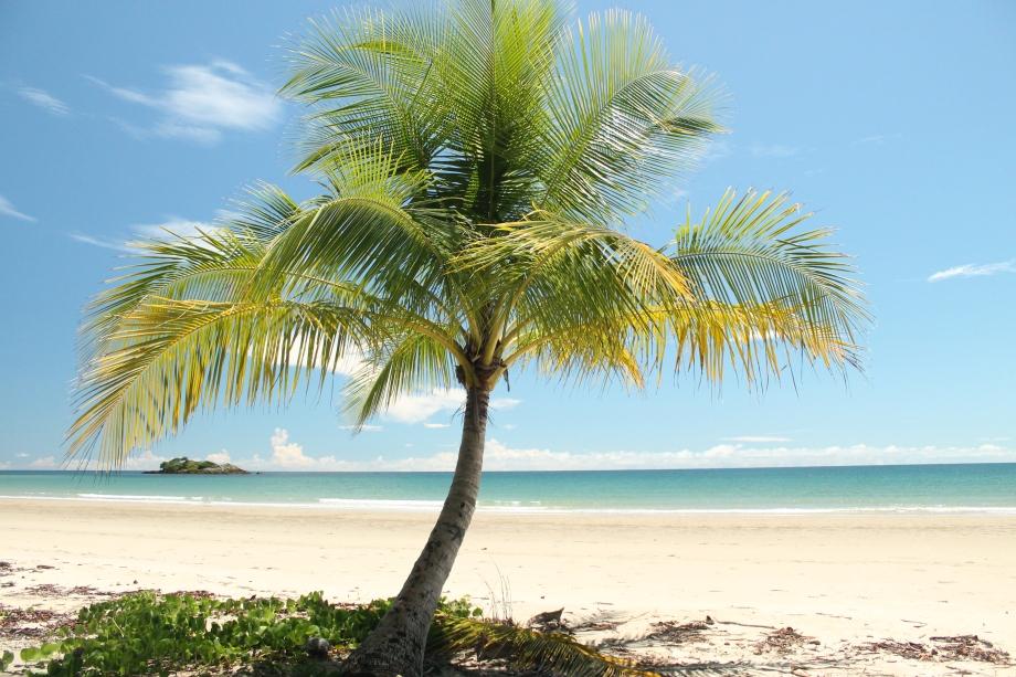 Plaża na przylądku Tribulation, Queensland, Australia