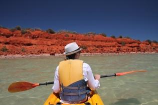 Shark Bay, Australia Zachodnia, Australia