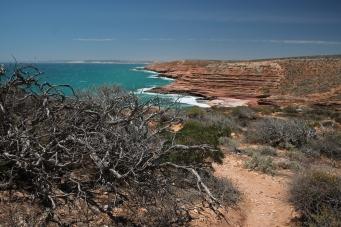 Kalbarri NP, Australia Zachodnia, Australia